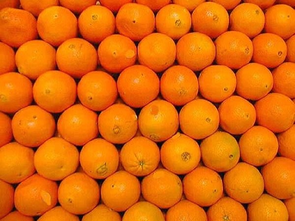 Willekeurige appelsienen ter opvrolijking van een stukje van gering belang.